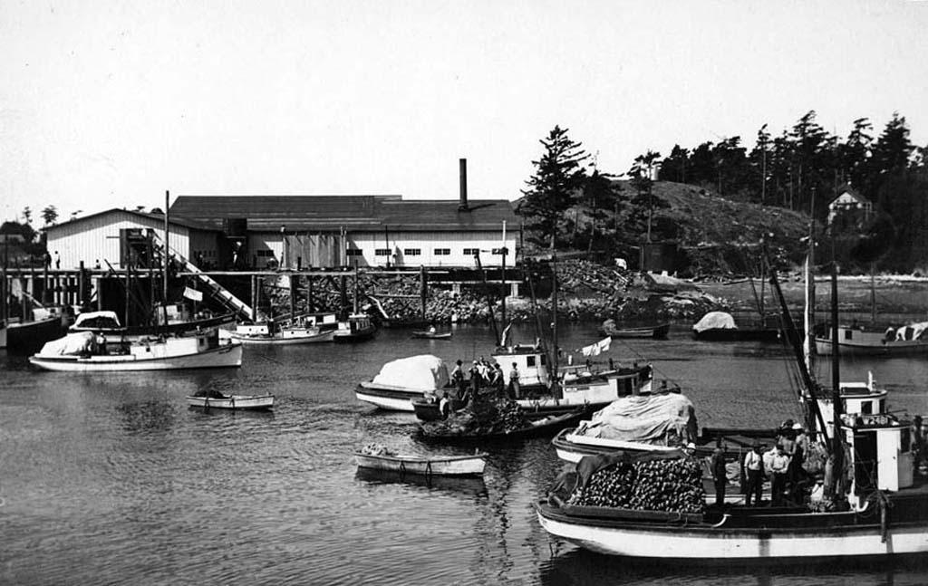 Lopez Island Thumbnail History Historylink Org